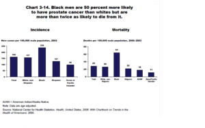 Source: Following charts are drawn from this resource: Mead, Holly, Cartwright-Smith, Lara, Jones, Karen, Ramos, Christal, Woods, Kristy, & Siegel, Bruce (2008). Racial and ethnic disparities in U.S. health care: A chartbook. The Common Wealth Fund.