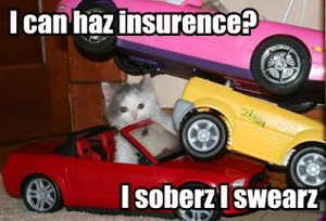 i-can-haz-insurence-i-soberz-i-swearz