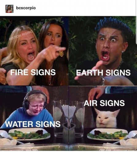 Meme depicts Fire Signs as Taylor Armstrong half of 'Woman Yelling at a Cat' meme; Earth signs as the Paul D meme; Water signs as CallMeCarson Crying meme; and Air signs as Smudge the cat