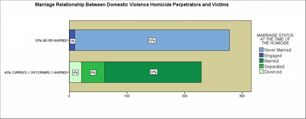 Image by the Washington State Coalition Against Domestic Violence. Data from Domestic Violence Fatality Review Project.