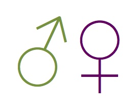 Gender Symbols