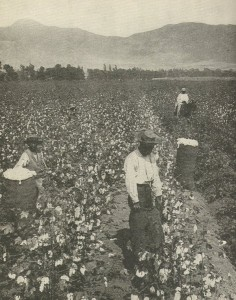 Slaves picking cotton Uploaded by Infrogmation on http://en.wikipedia.org/wiki/Wage_slavery