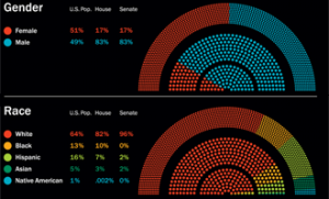 """Congressional demographics 