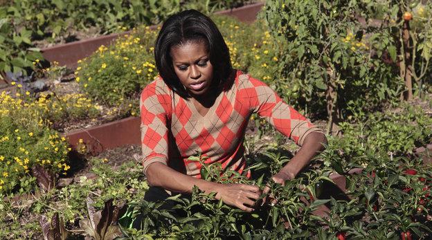 image from npr.com - http://tinyurl.com/kfknbsl