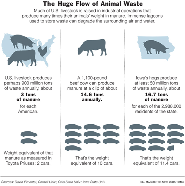 Huge Flow of Waste - New York Times