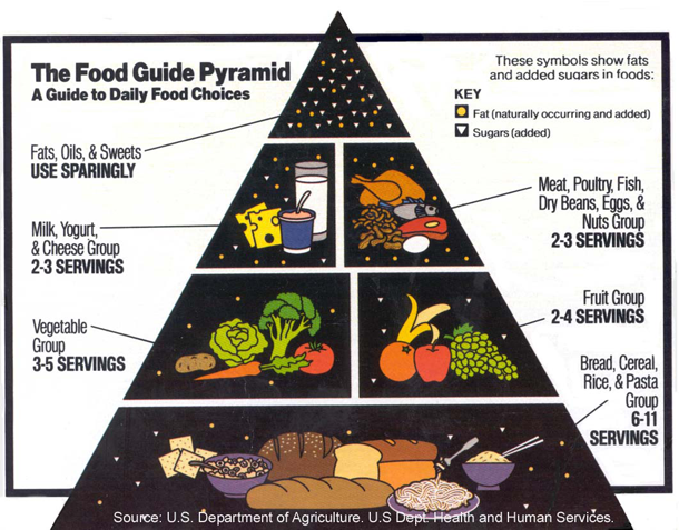 USDA Food Pyramid: 1995-2005