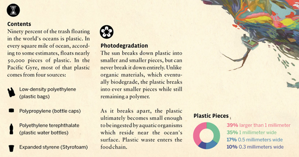 "Make-up of plastic pieces in the Pacific Gyre - Zoom of ""Through the Gyre"" by Jacob McGraw-Mickelson"