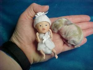 Depicting Fetal Development Micropreemie Dolls