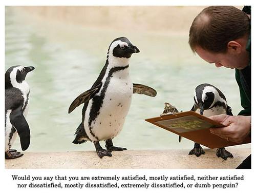 Image result for funny survey methods