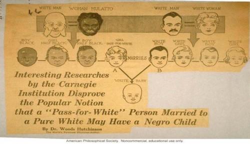 racism science