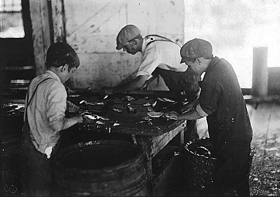 В начале 20 века в США распространенным случаем было использование труда детей из бедных семей...