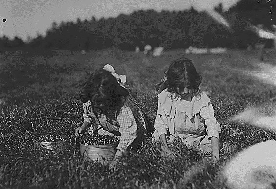 Child Labor in America 1908-1912 - Sociological Images
