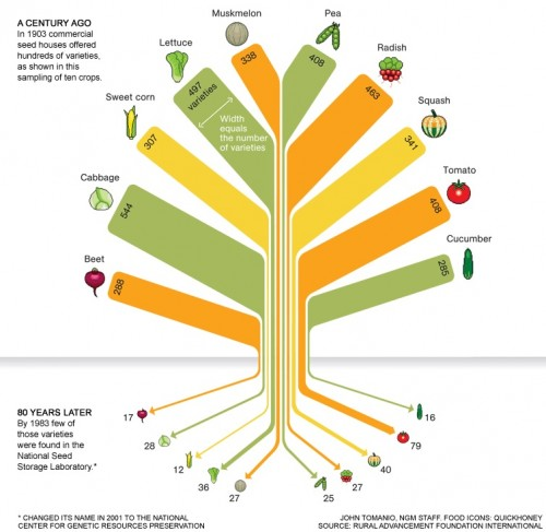 a discussion about the genetic diversity in agriculture Genetic diversity is the total number of genetic characteristics in the genetic makeup of a species it is distinguished from genetic variability , which describes the tendency of genetic characteristics to vary.