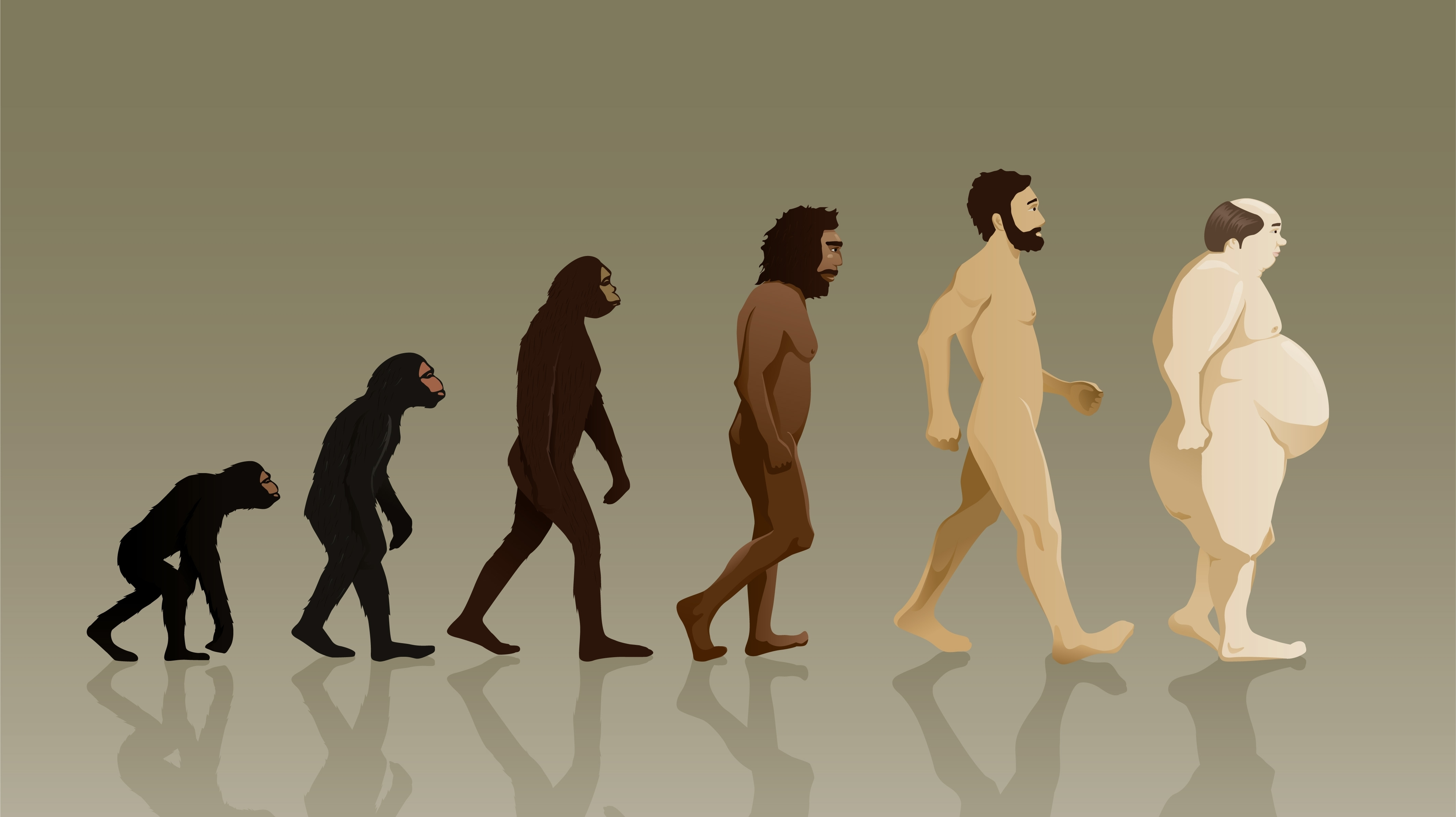 Racialized Representations of Evolution - Sociological Images