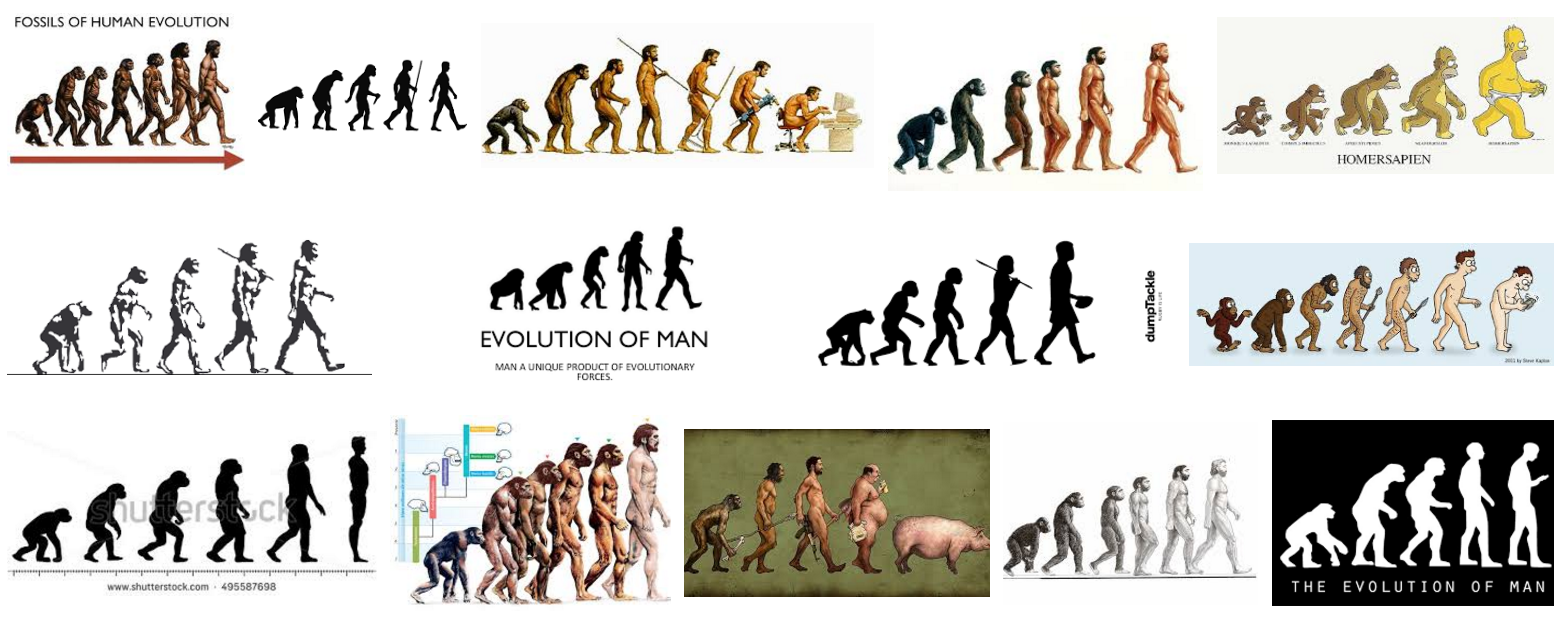 an overview of the evolution of man