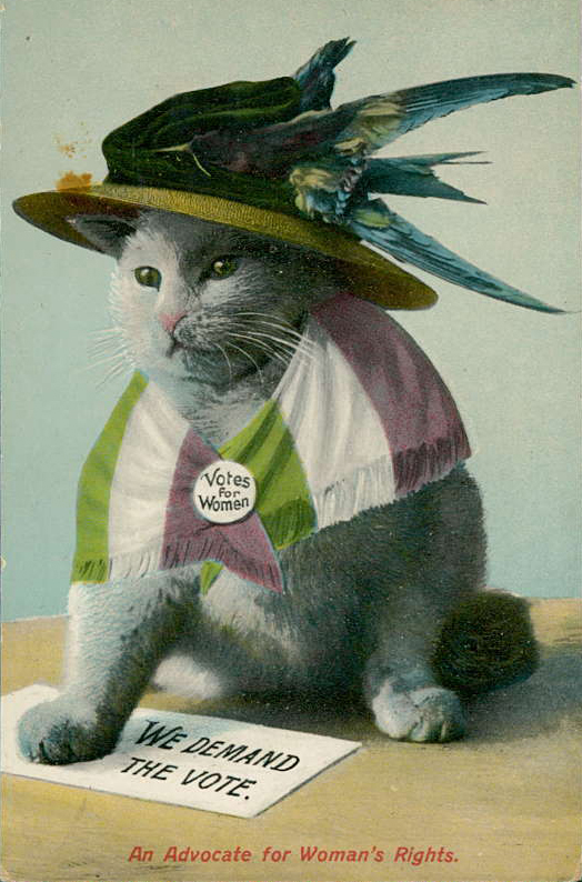 woman as cat in anti suffrage propaganda sociological images