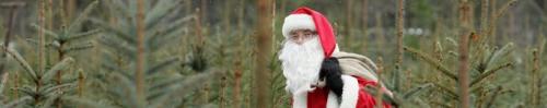 The Economy of Christmas