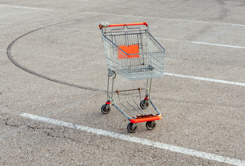 The Story of the Shopping Cart - Sociological Images
