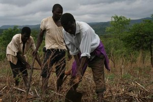 Malawian farmers. Photo by Find Your Feet via Flickr.com