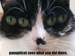 Panopticat