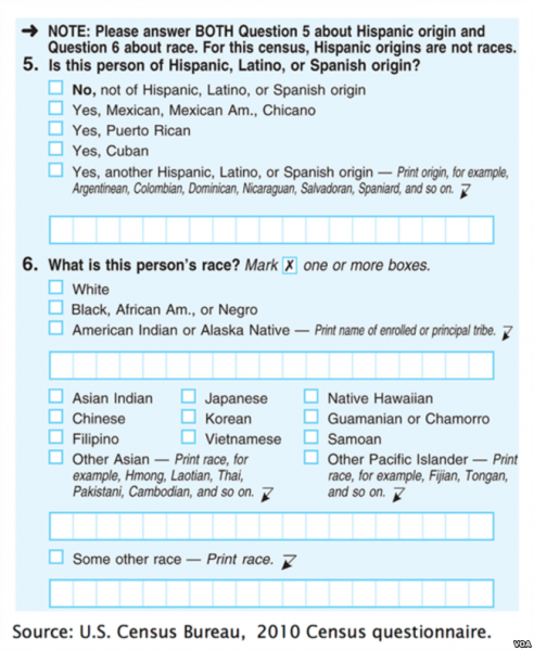 Photo shows a copy of the 2010 census questionnaire. The form is blue with check boxes and grids for the answers.